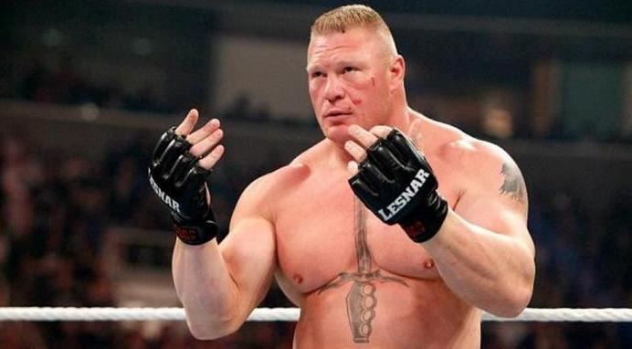 Brock Lesnar Pensiun dari Dunia MMA tahun ini